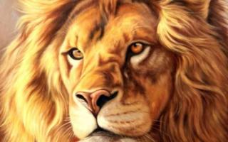 Воспитание ребенка льва