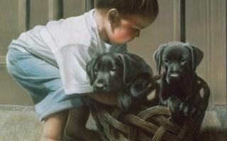 Купите ребенку собаку