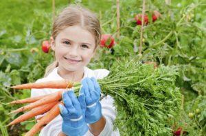 Вырастить овощ