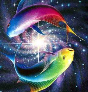 рыбы 1