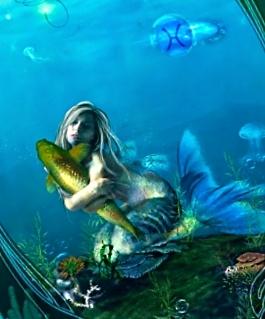 рыбы 6