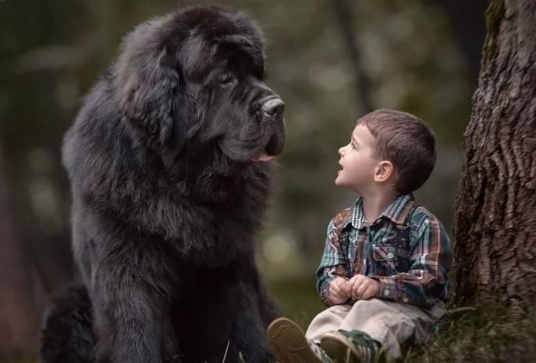 собака и ребенок 1