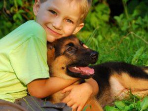 собака и ребенок 3