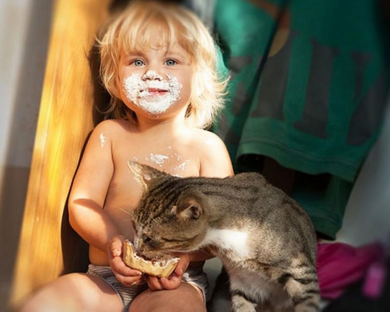 кошки и дети 7