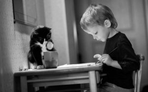 кошки и дети 9